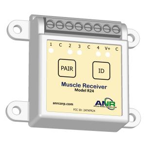 EMG Receiver Model R24